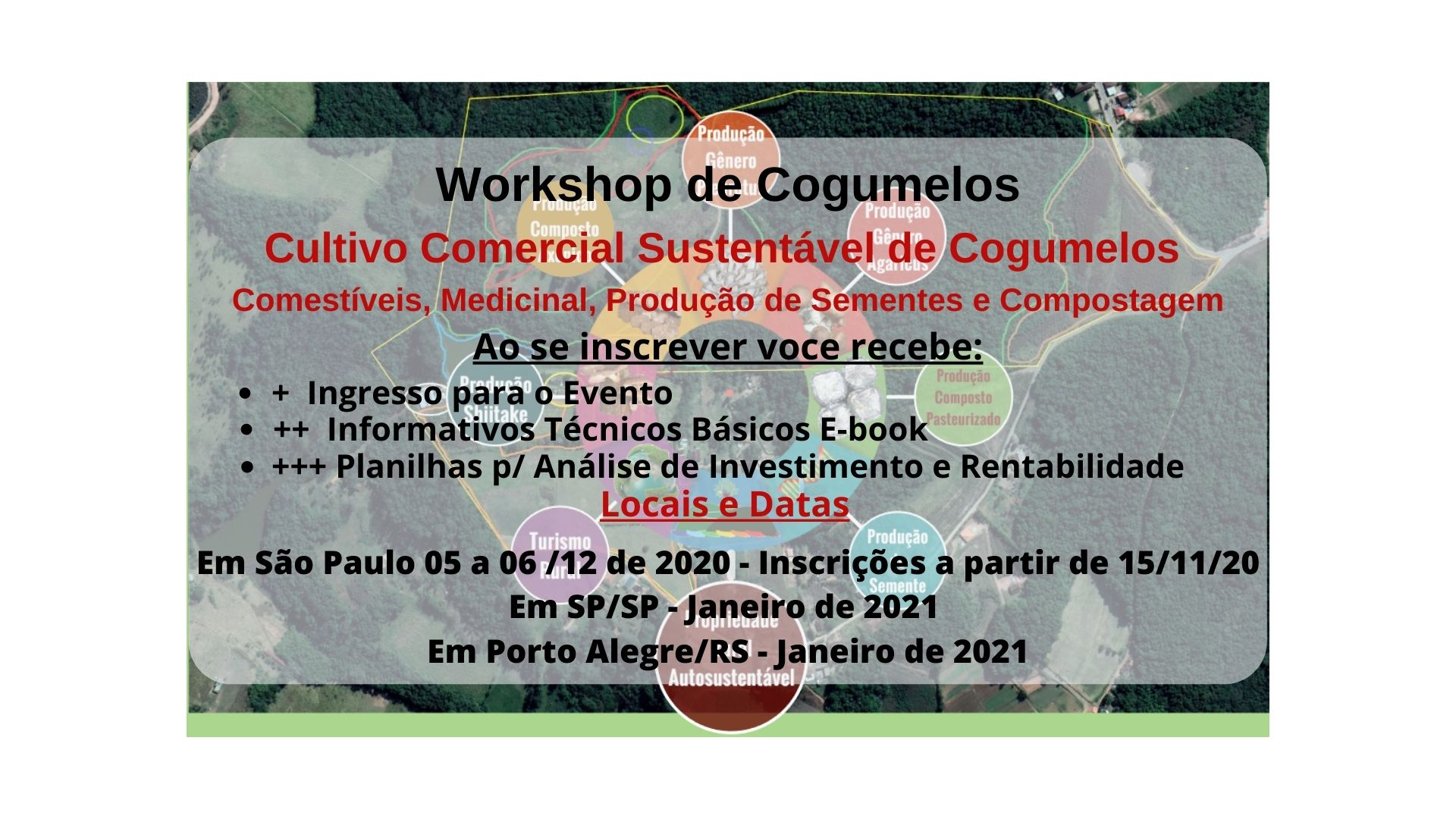 Workshop SP e POA 2020-2021