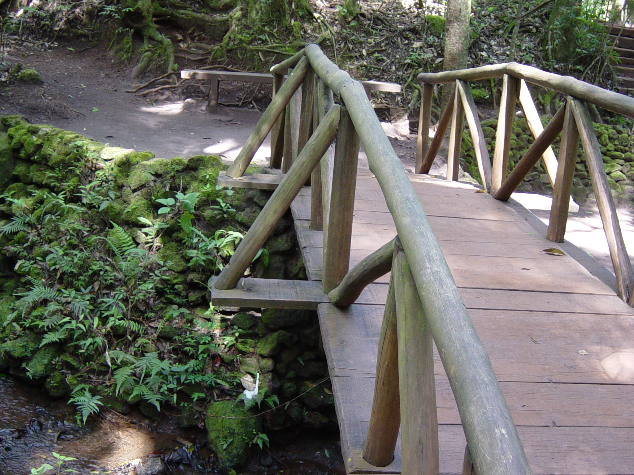 05 2005 ponte madeira suspensa (3)