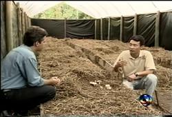Programa Globo Rural - 2002