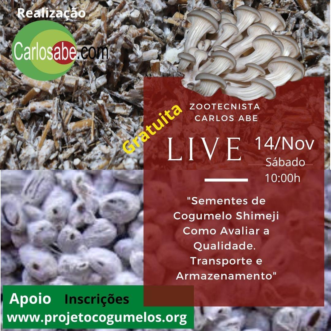 Live - qualidade de sementes