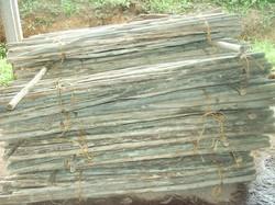 Cabos de ferramenta - madeira tratada