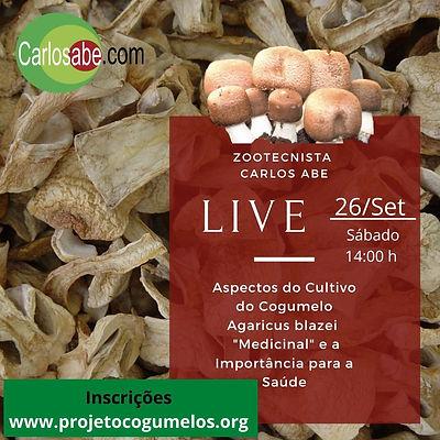 I - live cogumelo agaricus blazei.jpg
