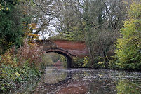 basingstoke canal, canoeing, winchfield hurst, barley mow