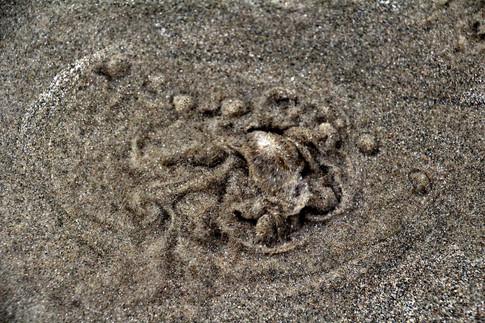Bubbling sands