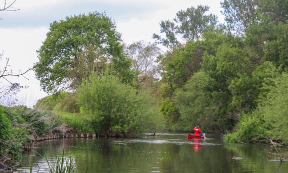 The Wey near Wisley RHS gardens