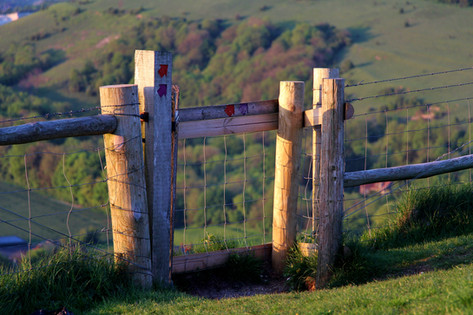 Gate, South Downs