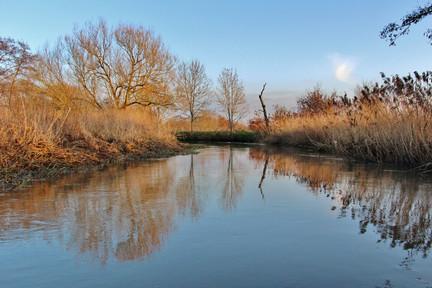 Gresham backwater