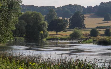 River Trent, Newton Solney
