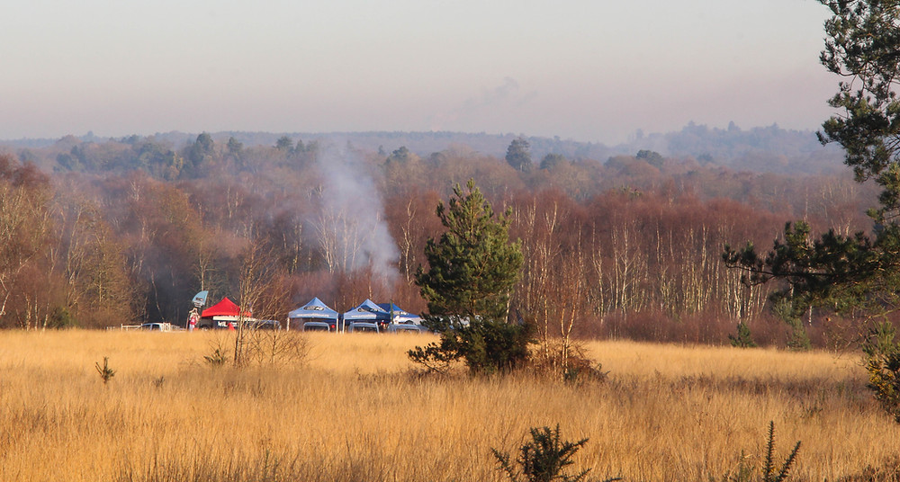 A Jolly Wild Christmas - the end of season event for Surrey Wildlife Trust on Chobham Common