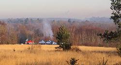Chobham Common, Surrey Wildlife Trust, Jolly Wild Christmas
