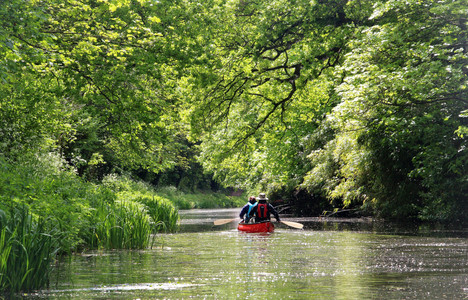 Taking the slow route by canoe