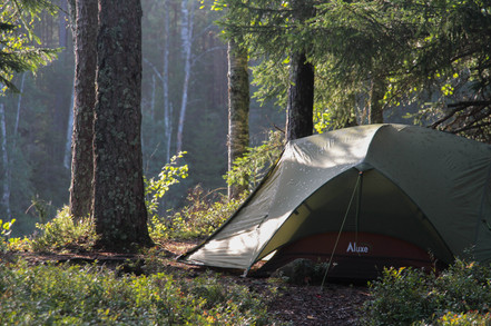 Camped in the endless woods of Scandinavia, Glaskogen