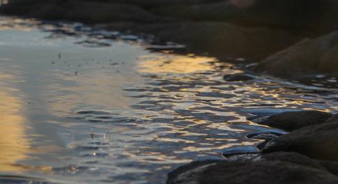 Ice Tide