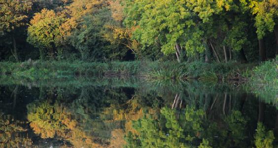 Near Riverside Park Nature Reserve