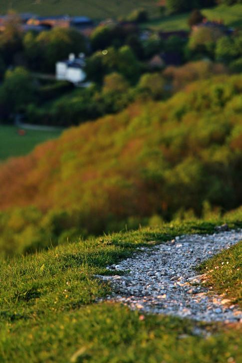 Path, South Downs