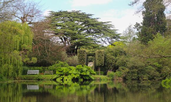 Gardens near Byfleet Mill