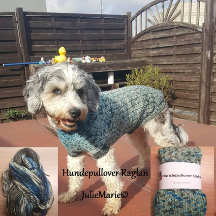 Hundepullover Raglan Julies Handarbeiten