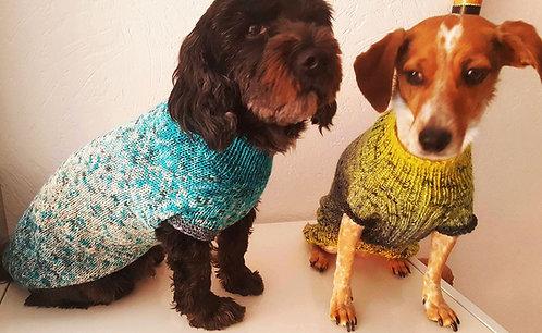 Anleitung Hundepullover Raglan