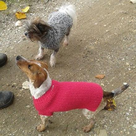 Julies Hundepullover