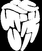 TRIATLON_logo%20v%20pruhu_bile_CZ_rgb_ed