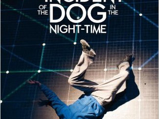 What's Curious About the Incident of the Dog in the Night-time?