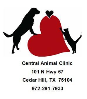 Central Animal Hospital