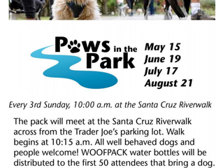 Paws In The Park, May 15th!