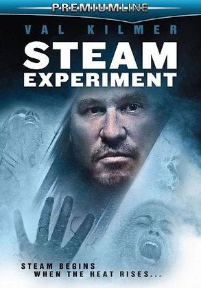 Steam Experiment