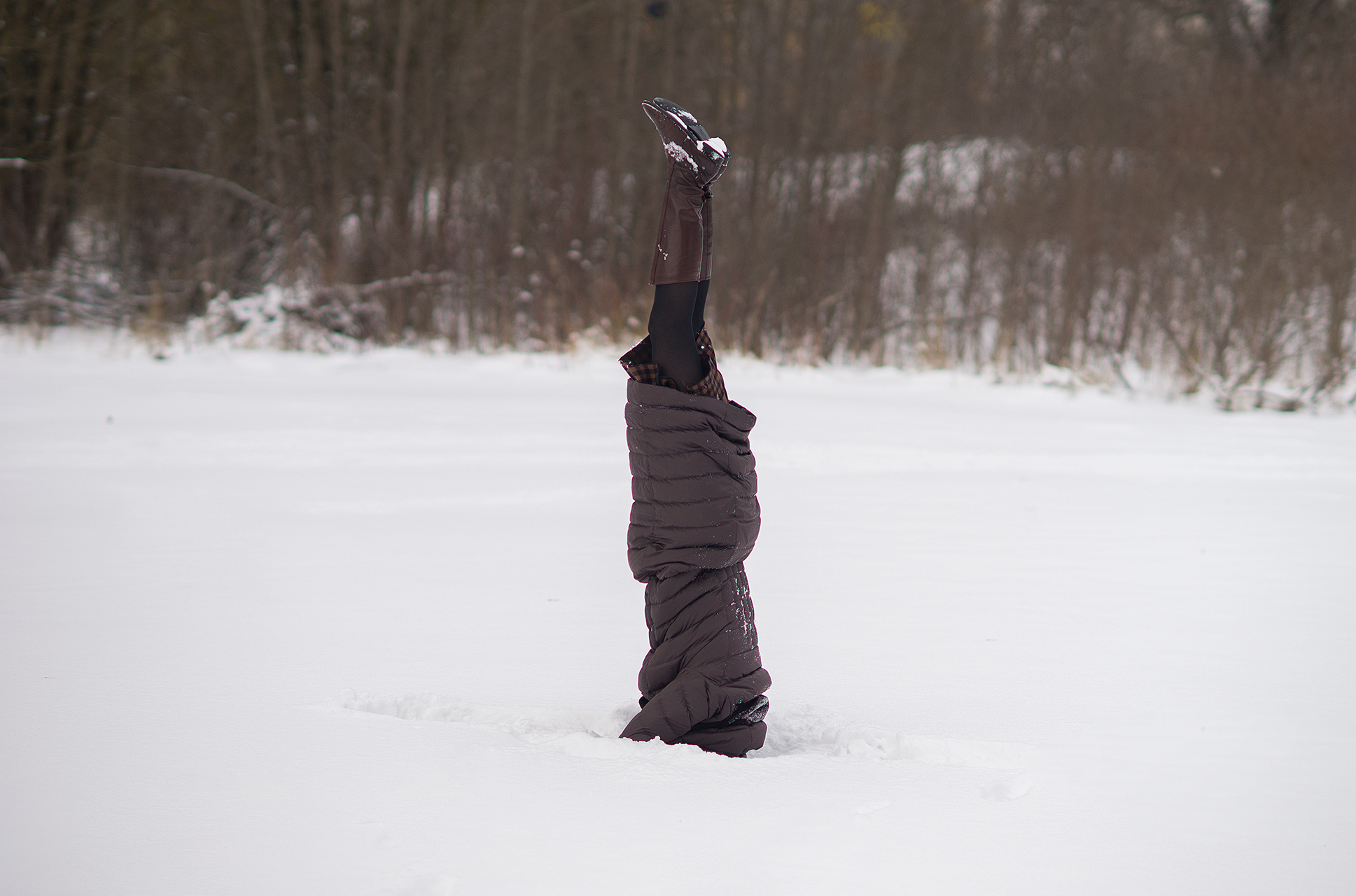 Žiemos išdaiga :)