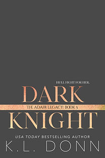 Dark Knight ebook tease.jpg