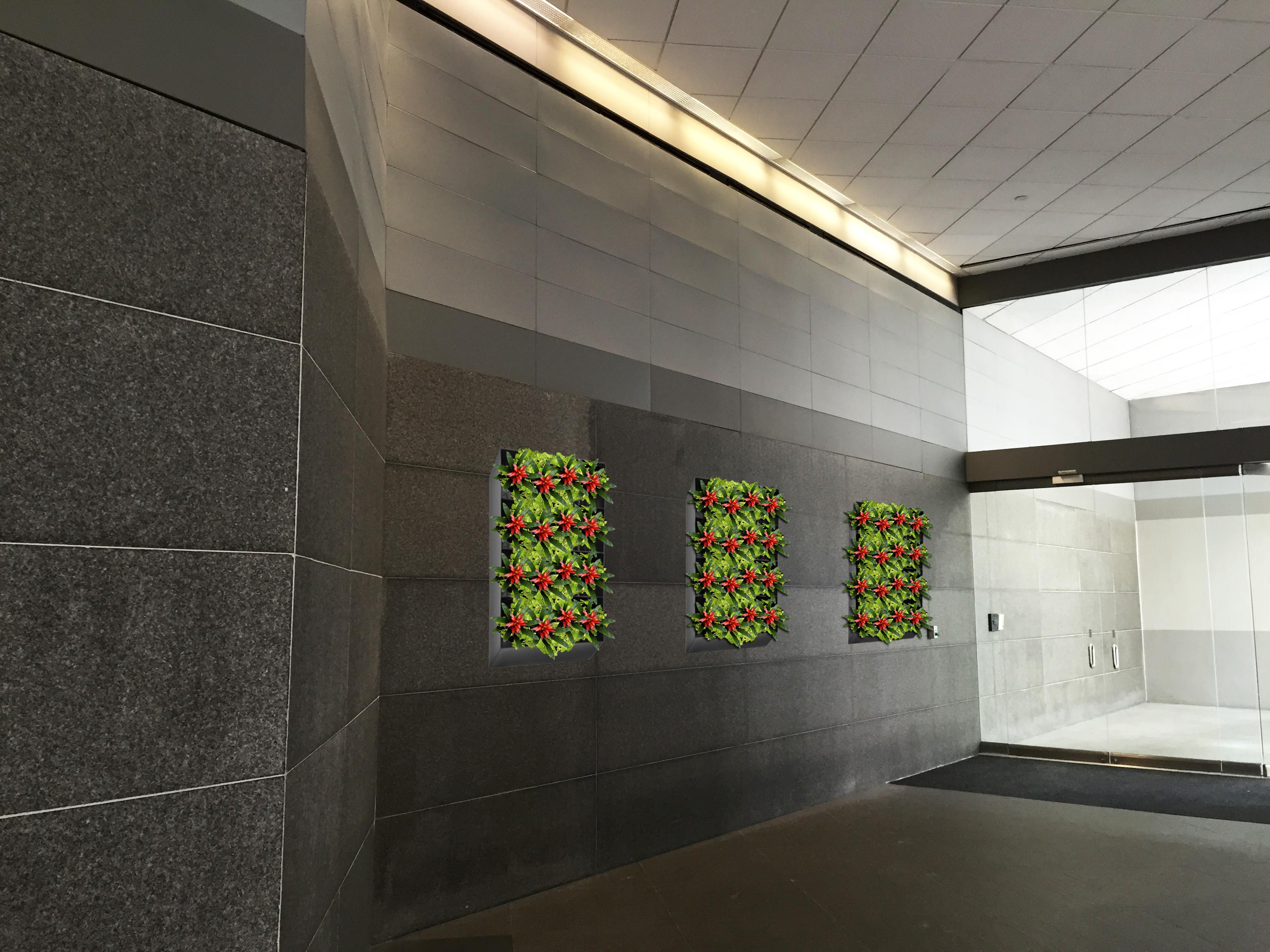 plant wall 1