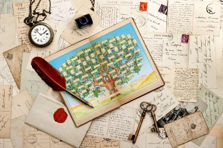 Семейное «Родословное Древо»