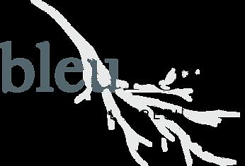 splash-logo-bleuroot.png