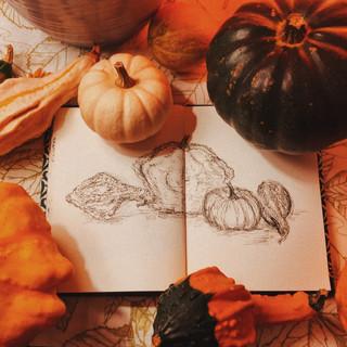 13. Gourds
