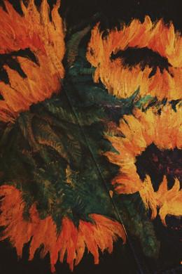Denim Sunflowers