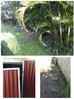 A garden makeover for Sunny Coast family