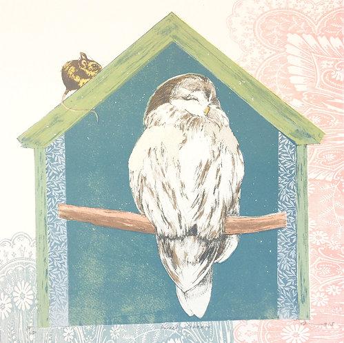 owl print for children
