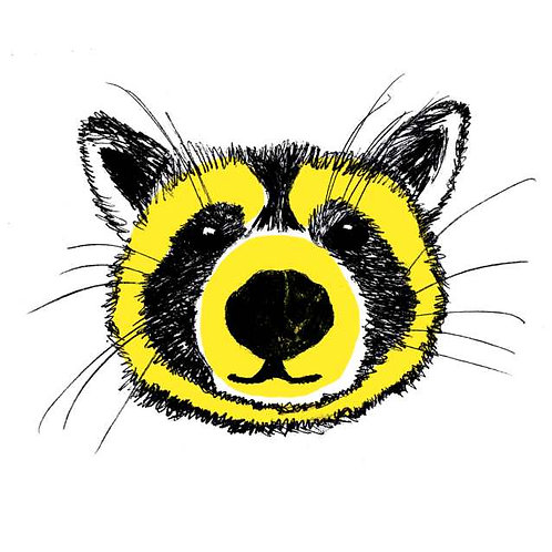 Yellow raccoon print for childrens rooms