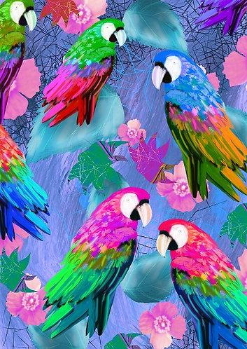 colourful parrot artwork