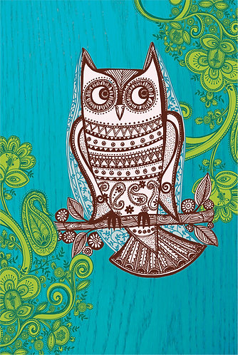 owl picture for children's rooms