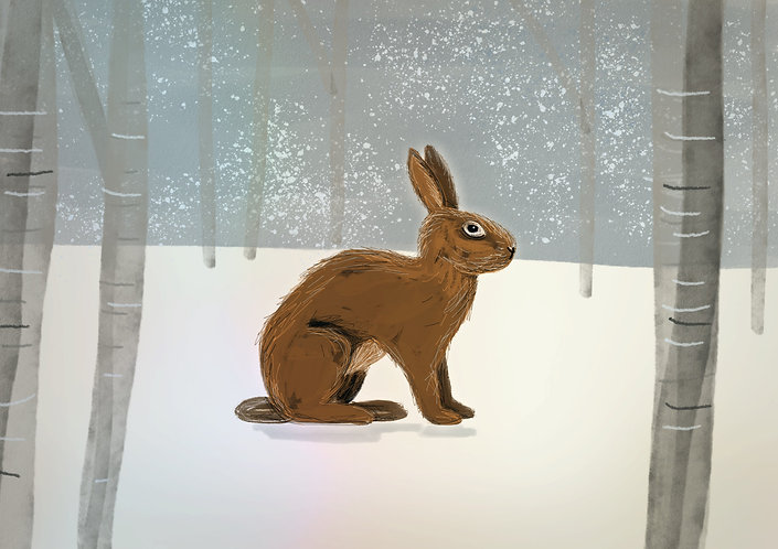Rabbit in snow print for children