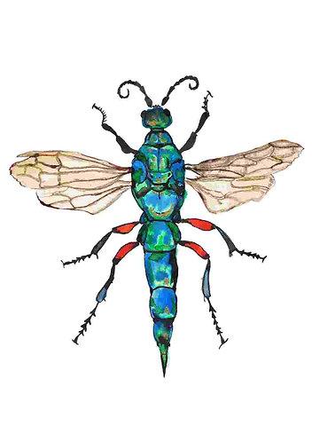 Jewel wasp print