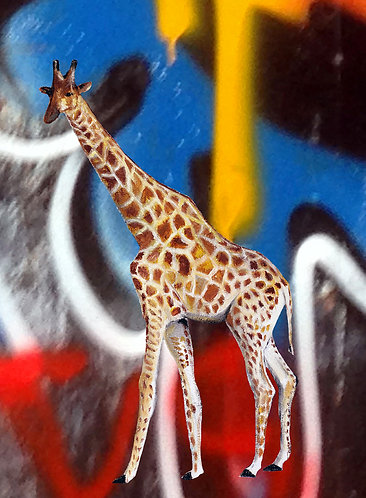 Giraffe and graffiti print