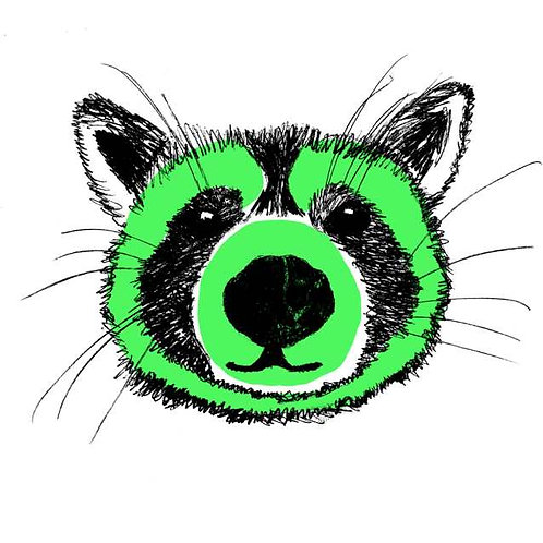 Green raccoon print for kids rooms