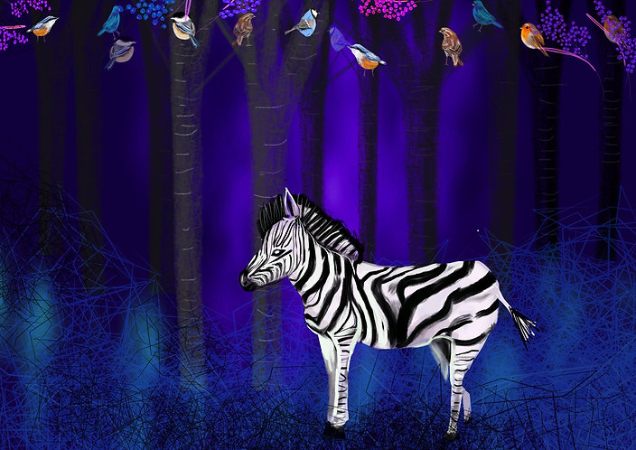 Limited Edition zebra print