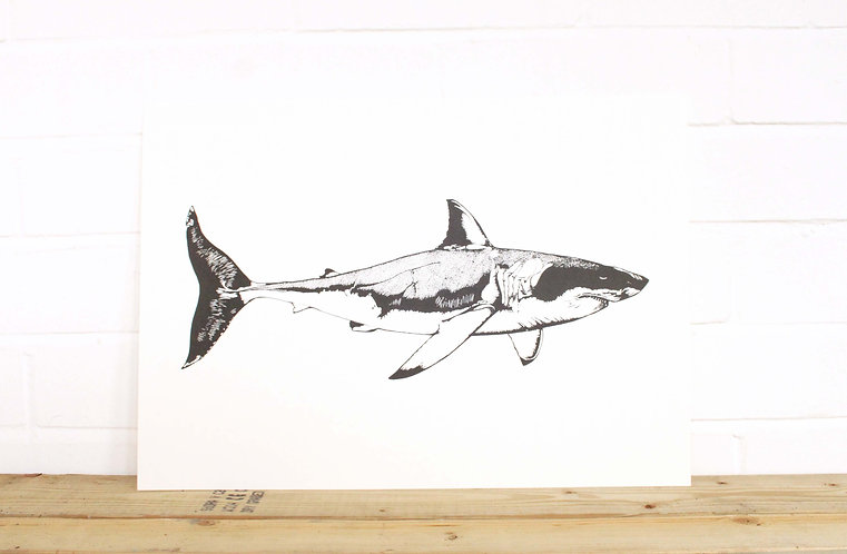 Great White Shark by Anoushka Cole