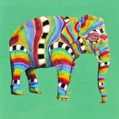 Asian Elephant 1 by Raph Thomas