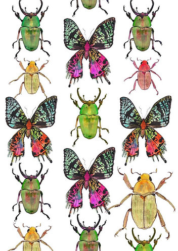 Butterfly print for kids rooms