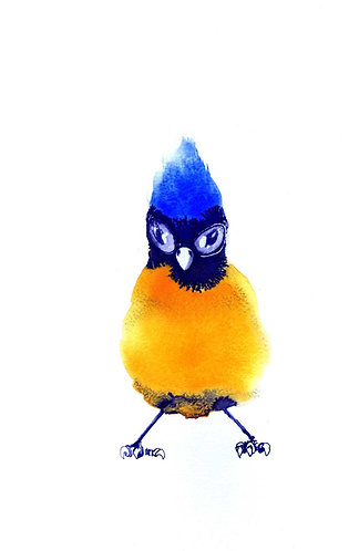 Bluebird by Nick Anaam