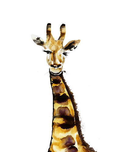 Giraffe by Nick Anaam